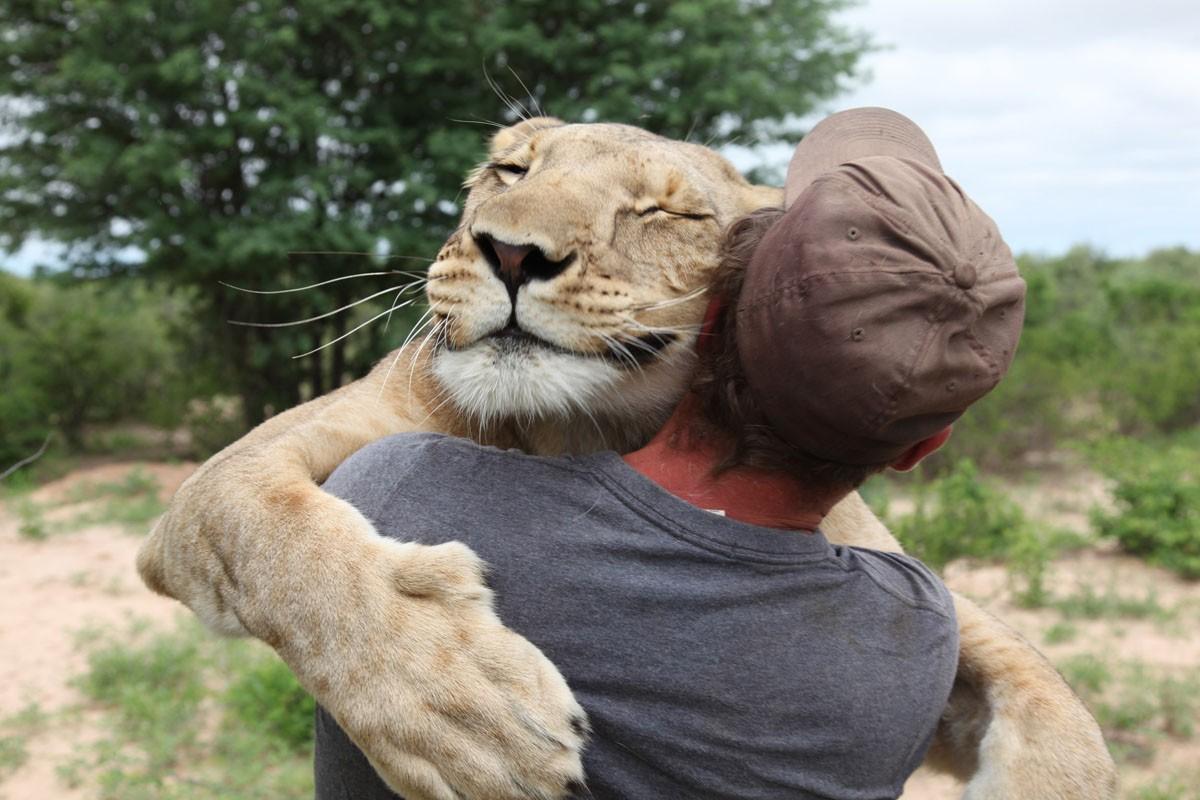 Прикольные картинки люди и животные