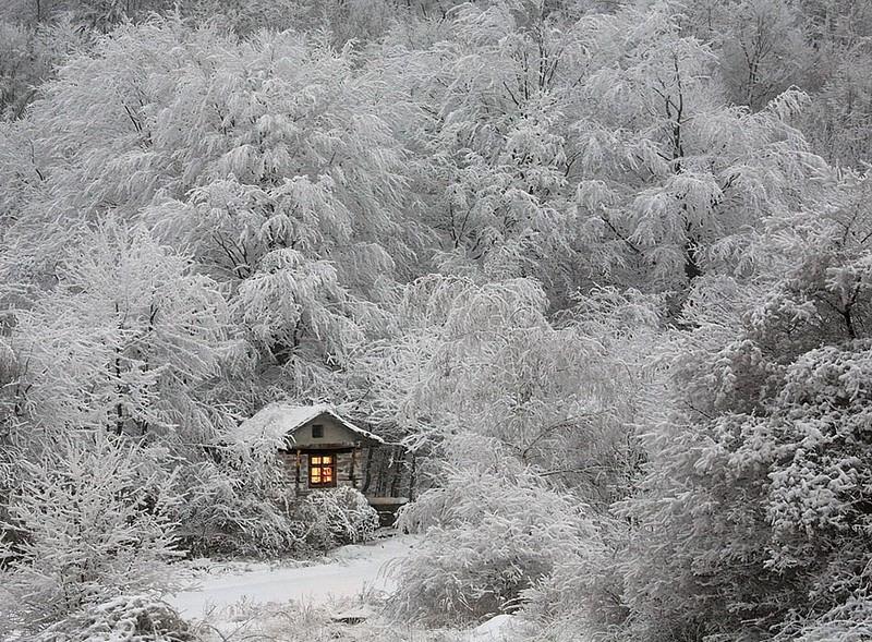 Охотничий домик в зимнем лесу.