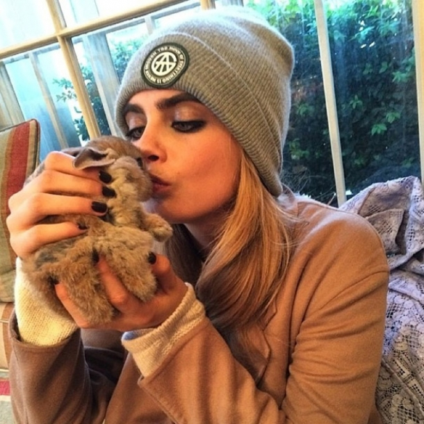 ...с кроликом