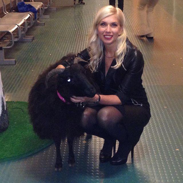 Алёна Свиридова сфотографировалась с козой Асей на съемках программы «Наш человек».