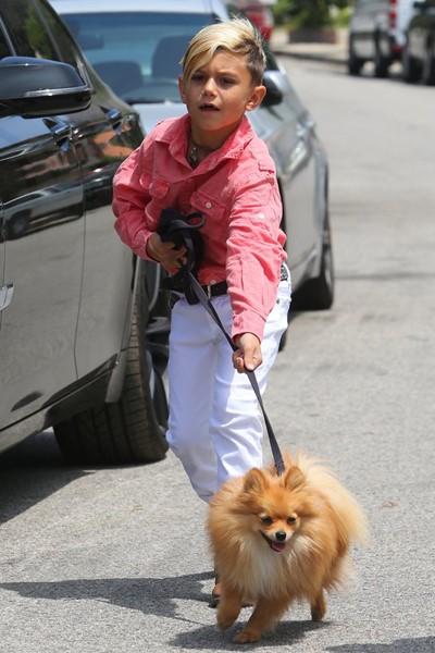 Отличный образ для прогулки со своей собакой.