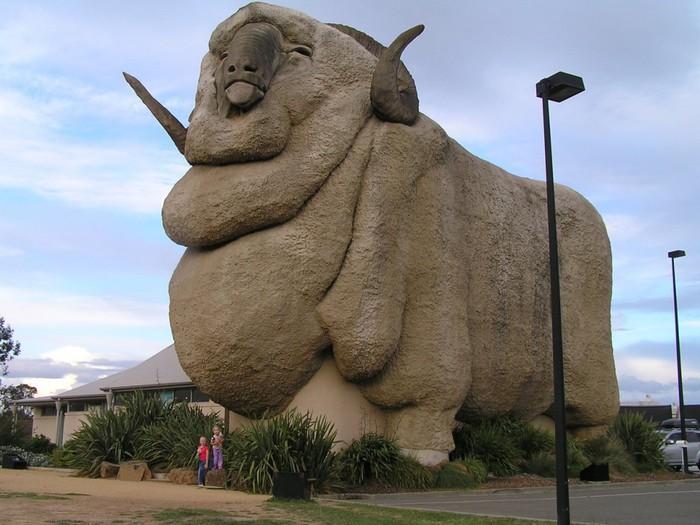 Дом-баран в г.Гоулберн, Новый Южный Уэльс, Австралия (магазин).