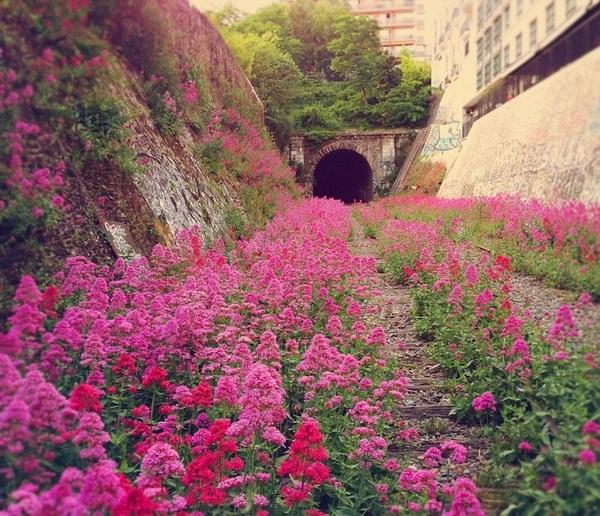 Заброшенная железная дорога Petite Ceinture, Франция.