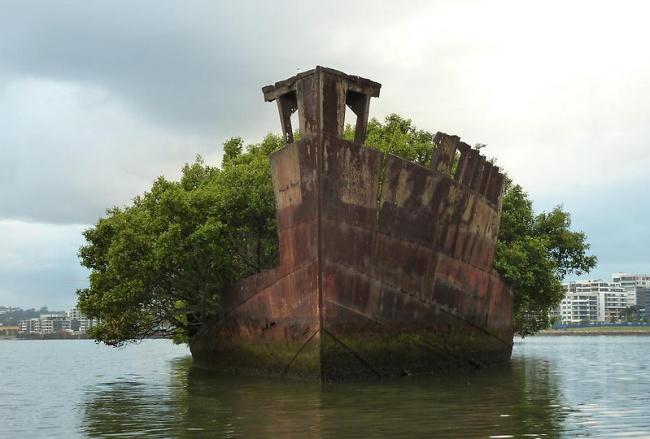 Обломки корабля Эйрфилд в заливе Хомбуш, Австралия.
