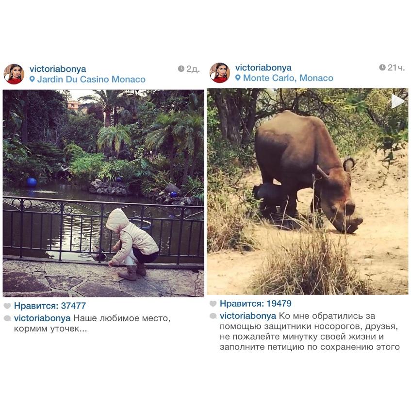 Виктория Боня (35) перед вылетом в Москву прогулялась с дочкой по Монако, кормила уточек и агитировала фолловеров заполнить петицию по сохранению исчезающего вида носорога.