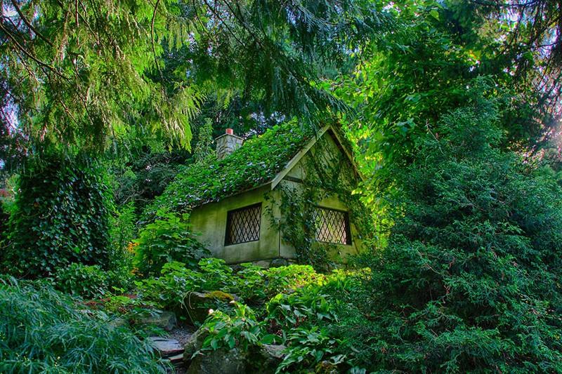 Домик укрытый лесом.