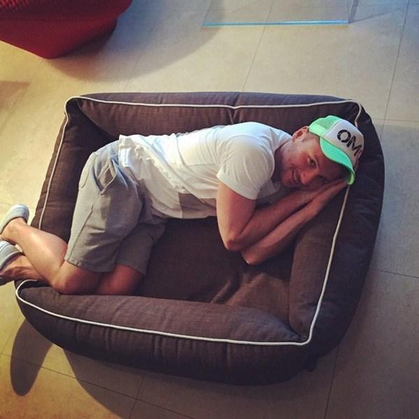 Сергей Лазарев отнял лежанку у своей собаки.