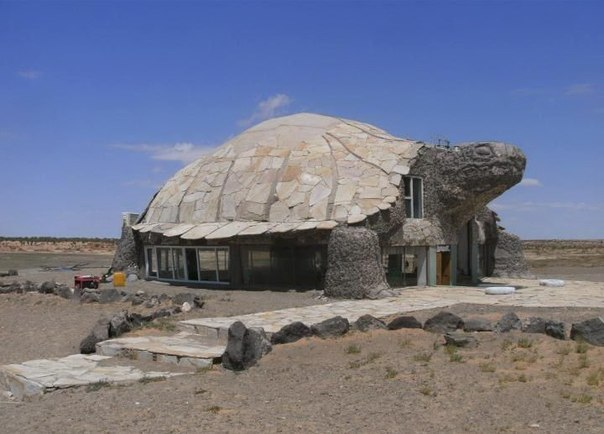 Дом в виде черепахи.