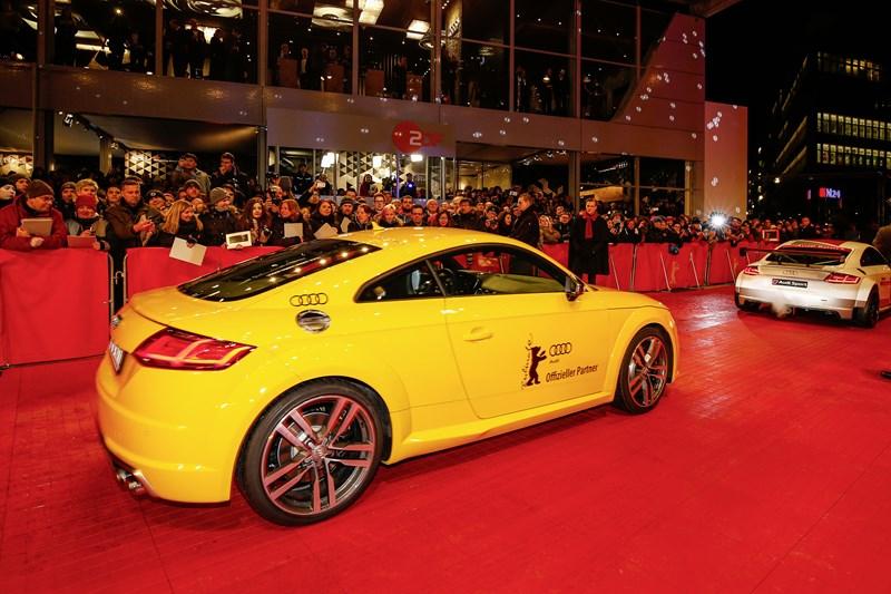 Audi vip transfer