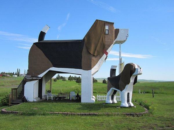 Дом - собака в Айдахо, США (гостиница).