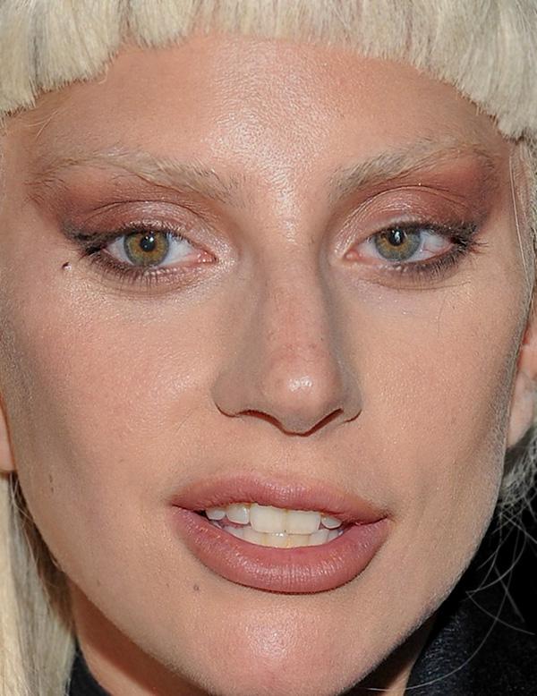 Певица Леди Гага, 29
