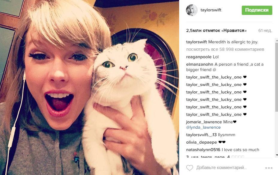 Тейлор Свифт и кошка