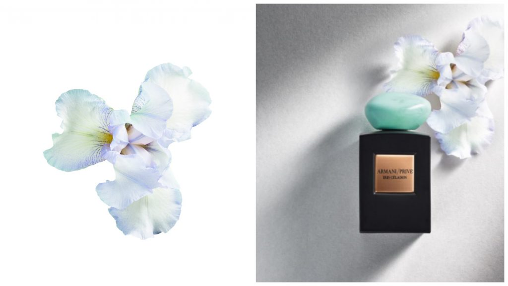 Аромат Iris Celadon Armani Prive