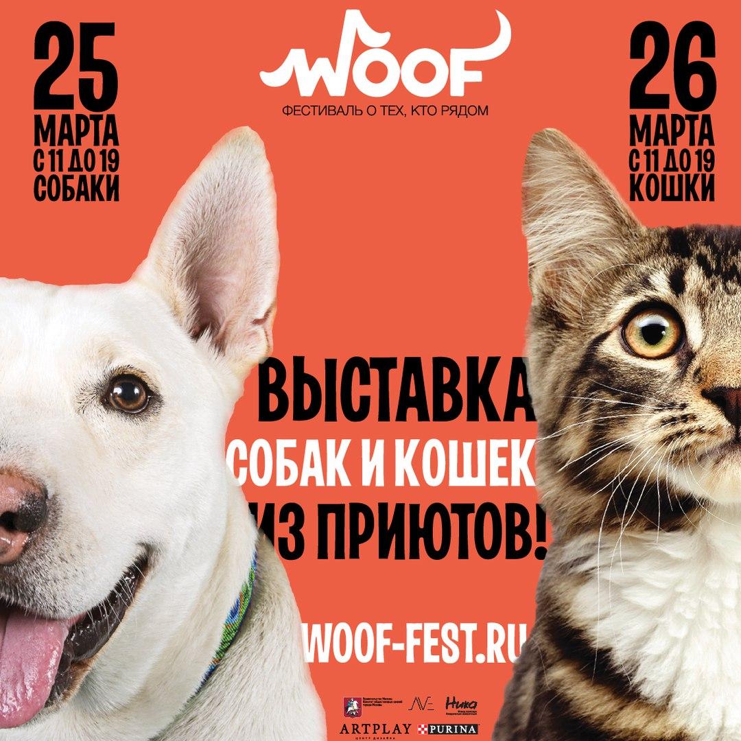 Woof Fest