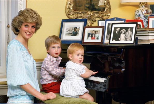 Принцесса Диана, Гарри и Уильям