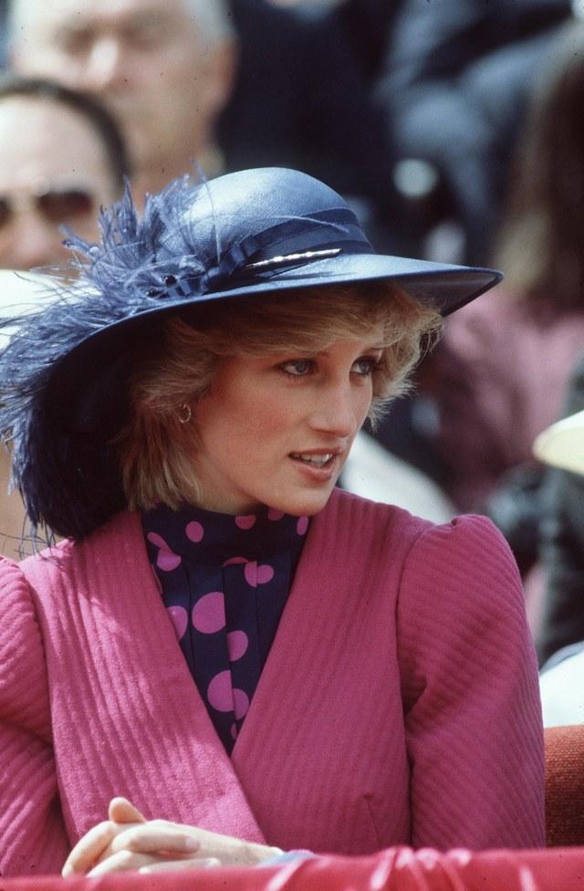 Принцесса Диана, 1993