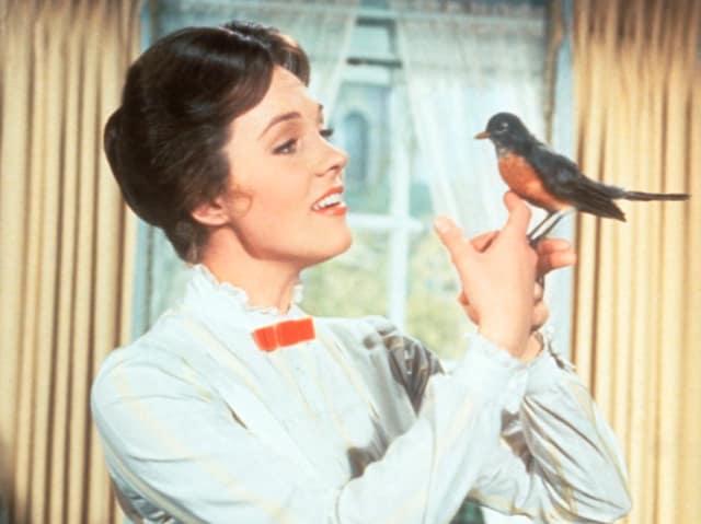 Актриса Джули Эндрюс, 1964. Потому что не только пела, танцевала и играла, но еще и писала книги для детей!
