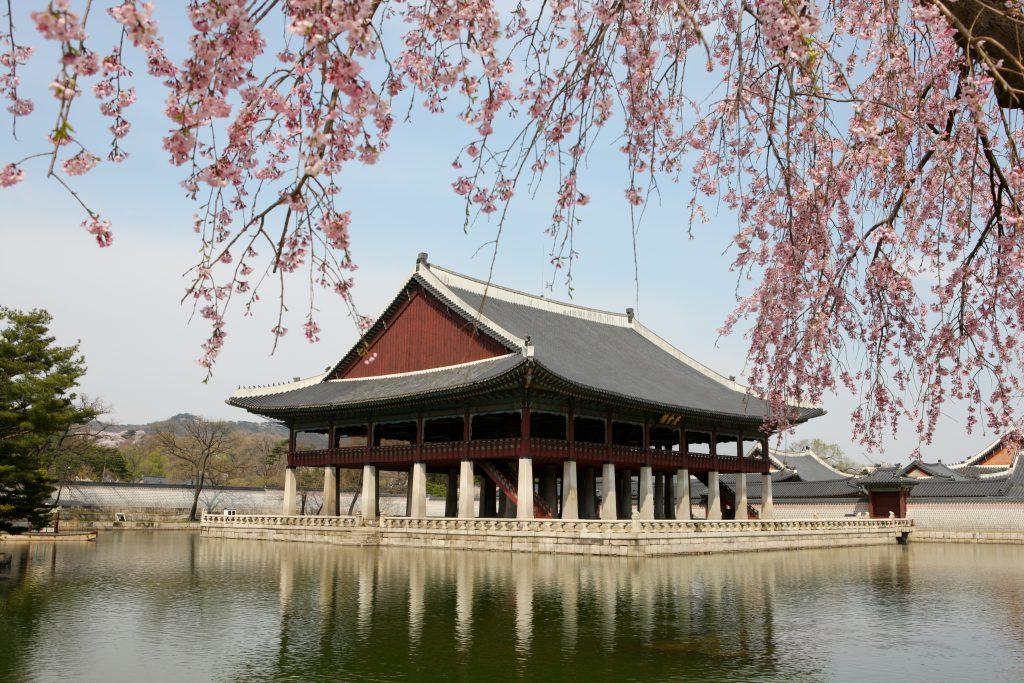 сеул Пять причин, почему тебе обязательно нужно съездить в Корею Пять причин, почему тебе обязательно нужно съездить в Корею dvorets kyonbokkun