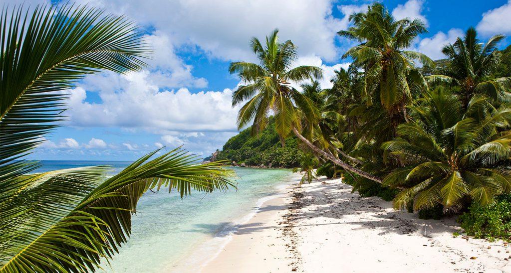 Сейшельские острова секс