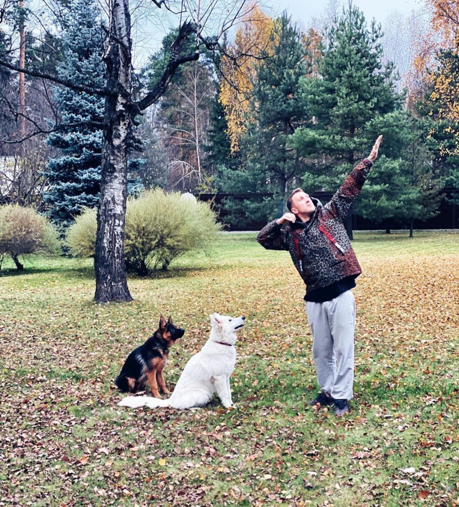 T-killah гуляет с собаками