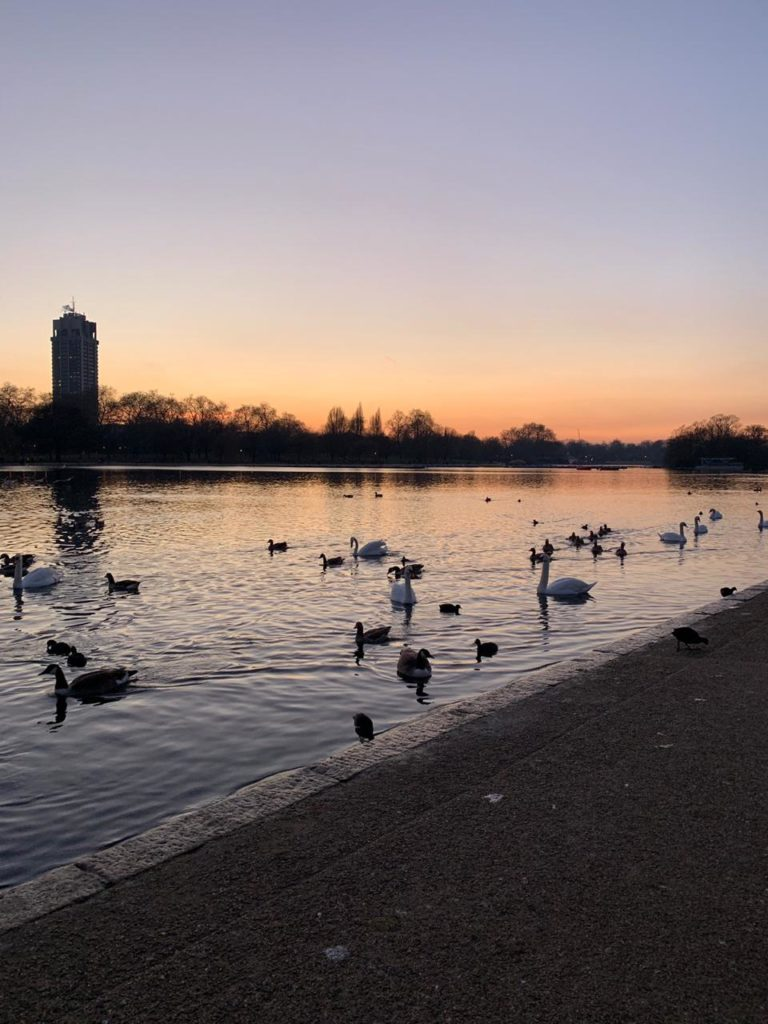 Hyde Park — королевский парк в центре Лондона.
