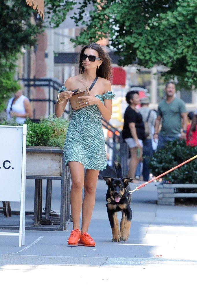 Вот как надо! Лучшие выходы Эмили Ратаковски на прогулках с собакой