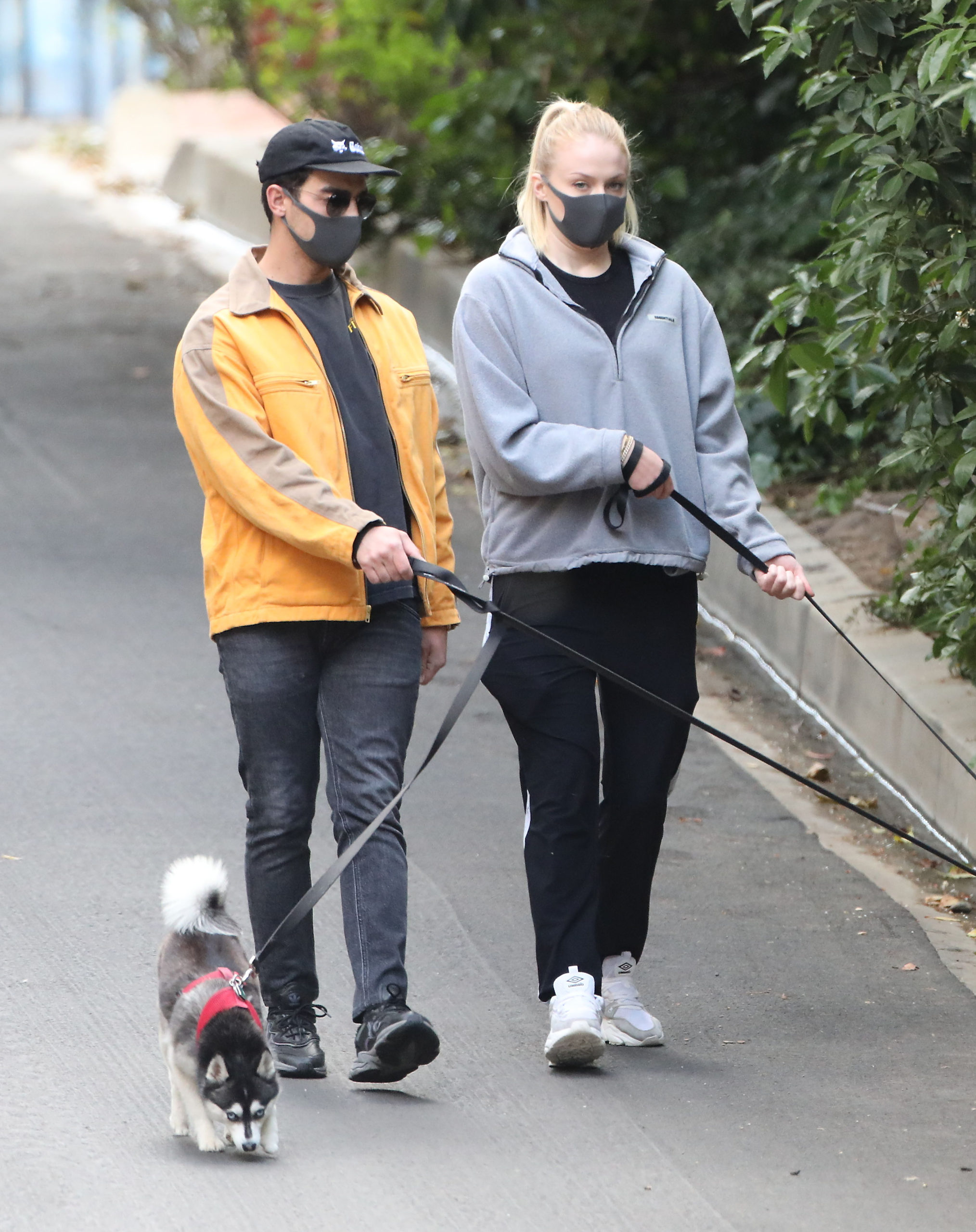 Joe Jonas And Sophie Turner Sport Masks While Their Pups Through Their Gated Community