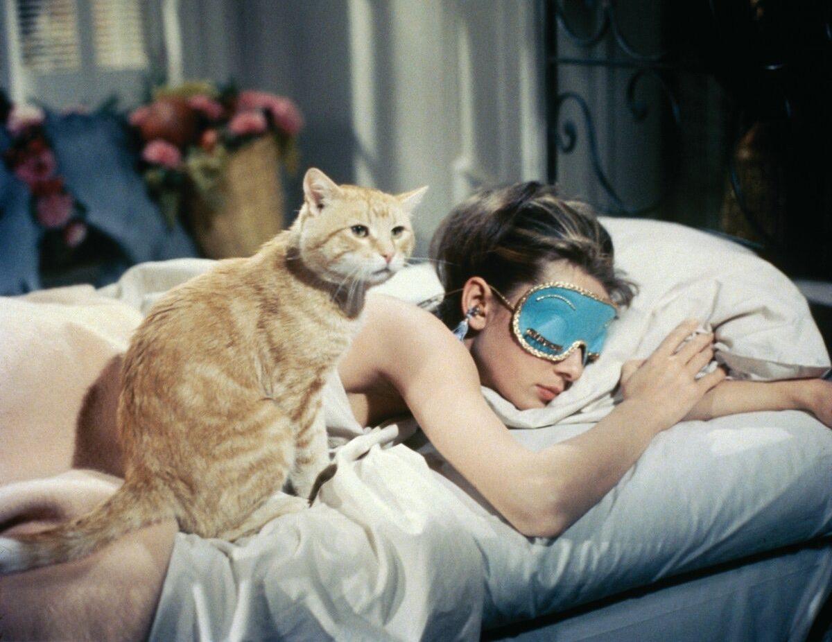 Полезные советы: как ложиться спать раньше