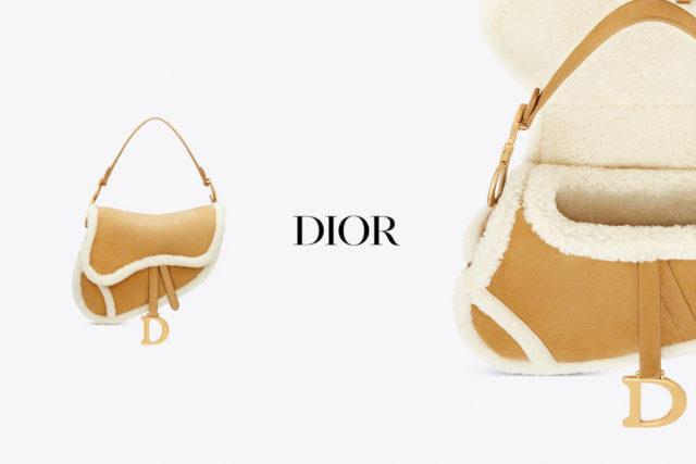 Dior выпустили обновленную версию Saddle bag